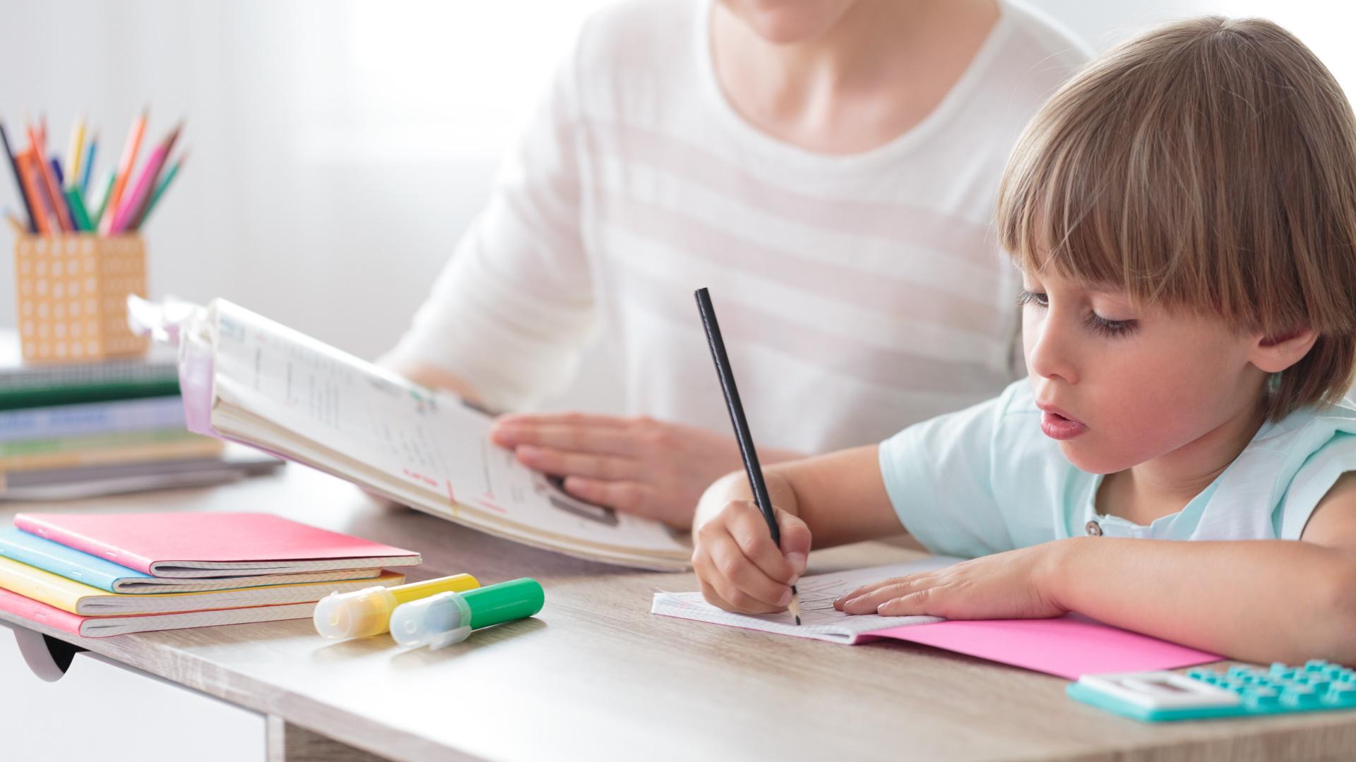 Vignette de la formation : Comprendre et traiter les troubles du neuro-développement de l'enfant